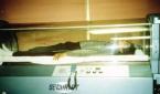 اكتشاف الغرفة الزجاجية التي كان ينام بداخلها مايكل جاكسون لإطالة عمره
