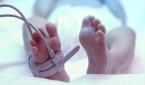 إعلان موعد أول ولادة طبيعية في الفضاء